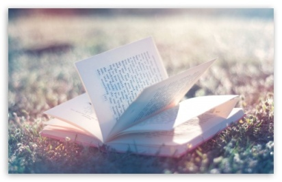 open_book-t2